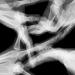 Jeux de mains, série danse de mains, EY 02